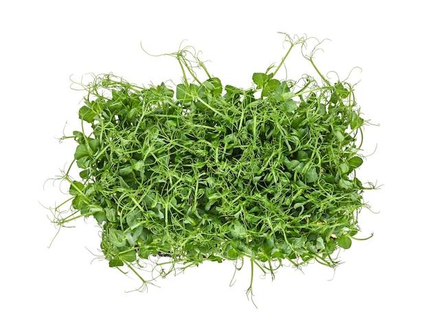 Крупным планом ростки микрозелени свежего зеленого горошка, изолированные на белом, вид сверху, прямо над