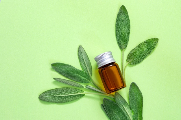 Close up fresh green sage herb leaf with bottle of essential oil on green background