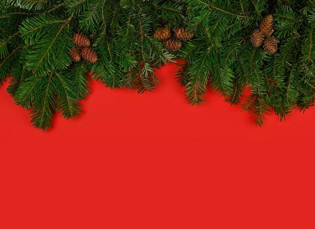 복사 공간 빨간색 배경 위에 콘과 함께 신선한 녹색 가문비 나무 또는 소나무 크리스마스 트리 분기를 닫습니다