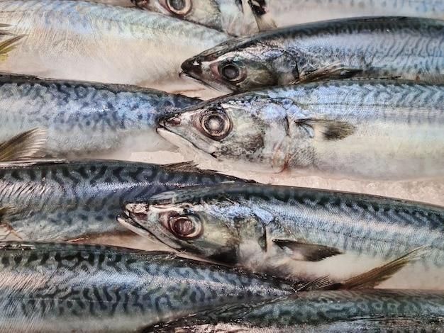 市場の屋台での販売のための氷の山のクローズアップ新鮮なサバの魚