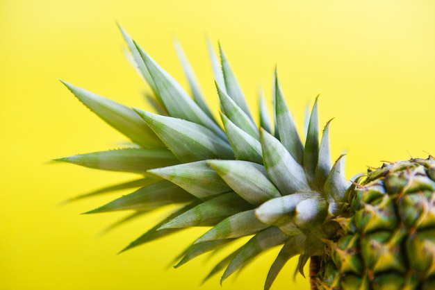 Close up fresh pineapple summer fruit on a yellow