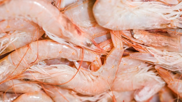 Close-up of fresh pink shrimps