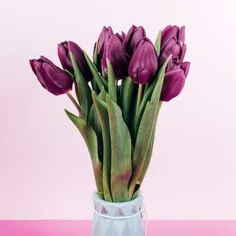 Close-up of fresh red tulip flowers in vase on pink backdrop