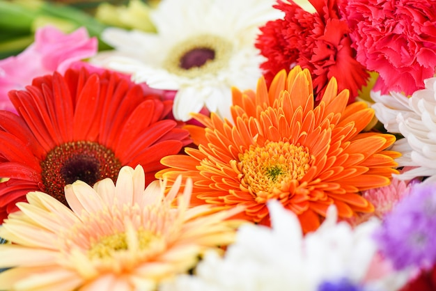 Close up fresh spring flowers bunch plant gerbera chrysanthemum colorful flower background