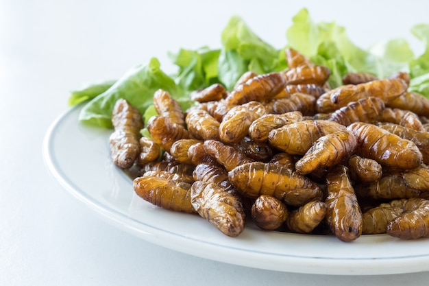 Close up of fried insects in dish on white background