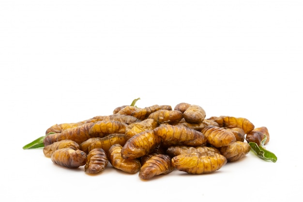Close up of fried insects on a white background