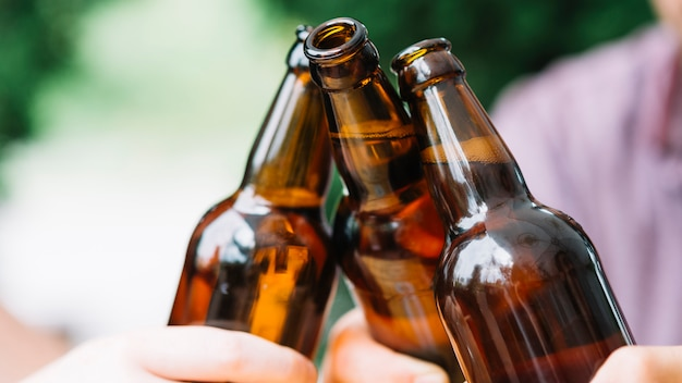 Close-up of friends clinking brown beer bottles