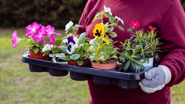 Крупный план садовника с цветочными горшками