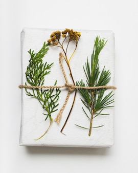 Close-up of gift with string and fern