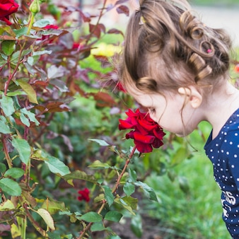 Close-up of a girl smelling beautiful red rose
