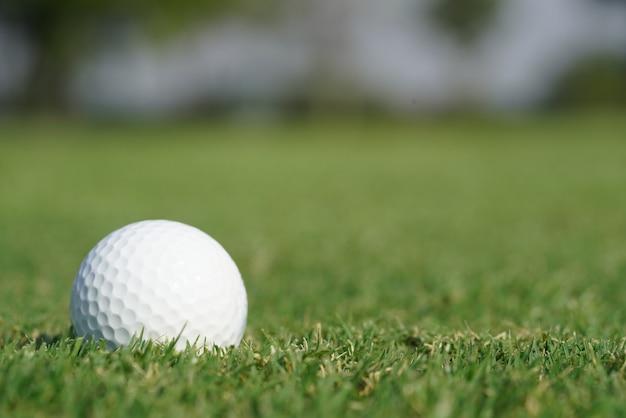 Close-up on a golf ball on a green grass
