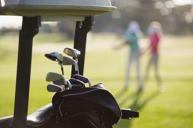 Close-up of golf clubs