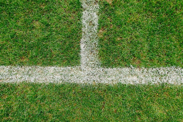 Close up of grass and marks on football or soccer field