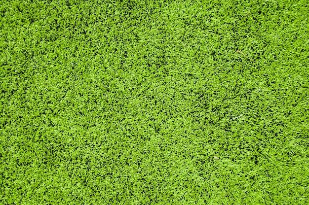Закройте зеленый фон текстуры травы