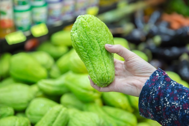 Close up of green chayote in the woman hand.