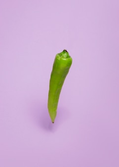 Close-up of a green chili pepper on purple background