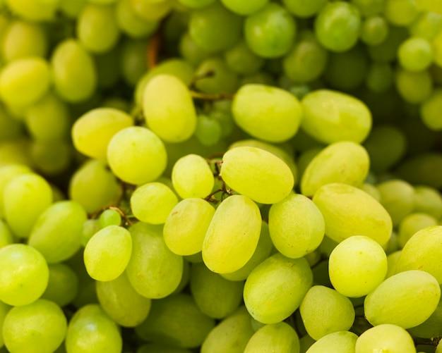 Close-up of green organic fresh grapes