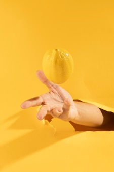 Close-up hand catching raw lemon