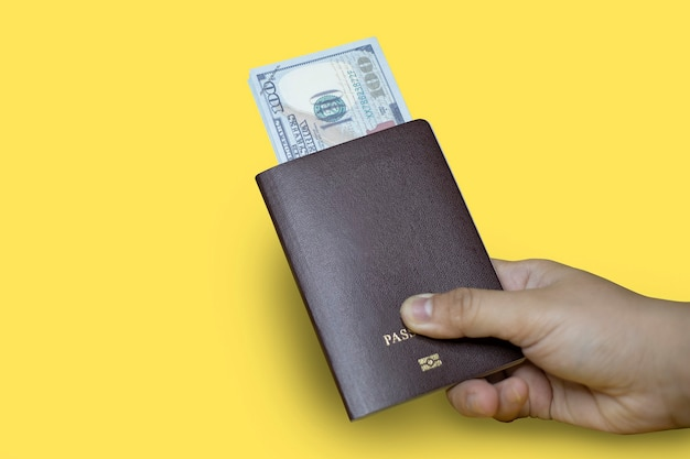 Close up hand holding a brown passport with dollar bills inside, yellow background, passport used for international travel, isolated on yellow background. passport clipping path.