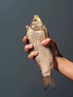 클로즈업 손을 잡고 신선한 생선