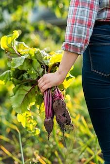 Крупным планом рука овощи