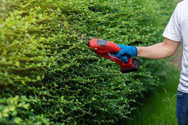 自宅の庭でコードレス電気生垣切断およびトリミングプラントを使用して手を閉じる