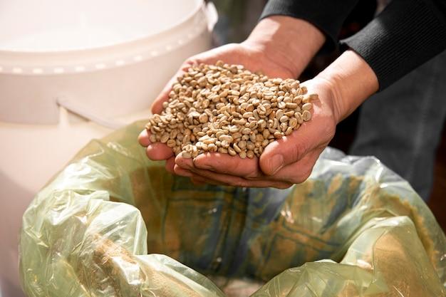豆を持っているクローズアップの手 無料写真