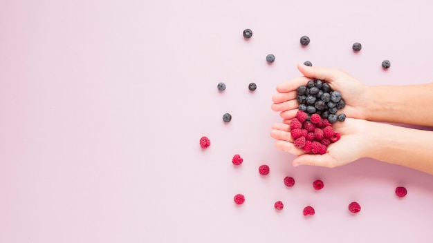 Close-up of hands holding raspberries and blueberries on pink background