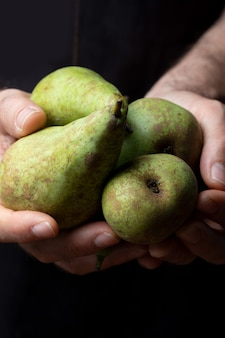Close-up of hands offering fresh and raw green pears