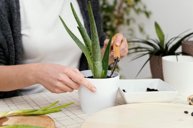 Руки крупным планом кладут почву в горшок