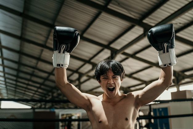 Close up of handsome muay thai boxer in boxing gloves when winning raises both hands with copyspace sitting on the floor of the boxing ring