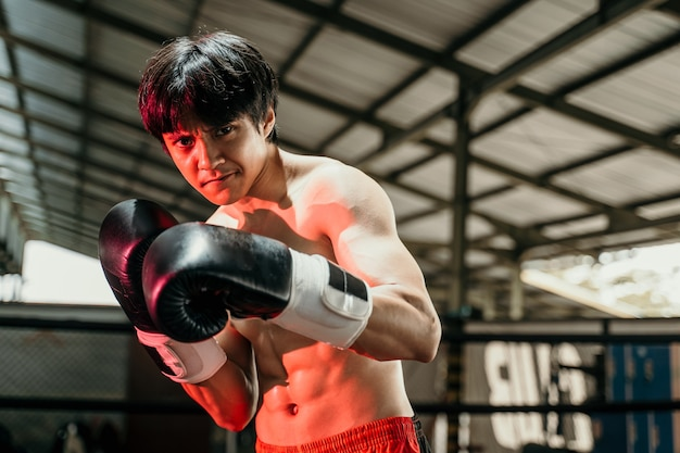 Close up of handsome muay thai boxer fighting in gloves in boxing ring with the copyspace