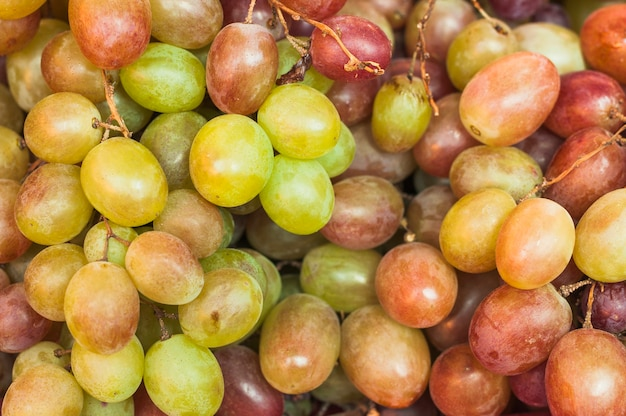 Close-up of harvested fresh grapes