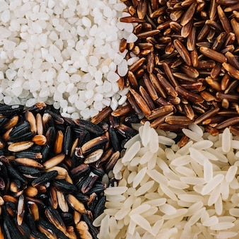 Close-up heaps of assorted rice