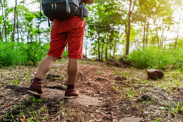森を歩くトレッキングブーツを持つハイキング男を閉じる