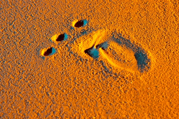 Close-up of human foot shape on sand