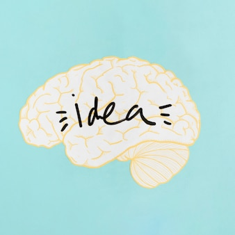 Close-up of an idea word inside brain on turquoise background