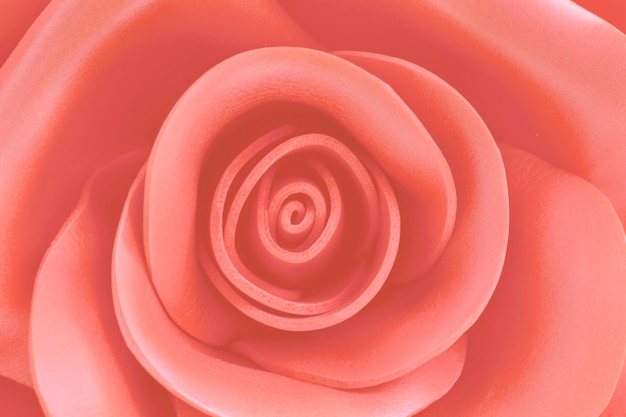 Close up image of beautiful rose with blur in trend color