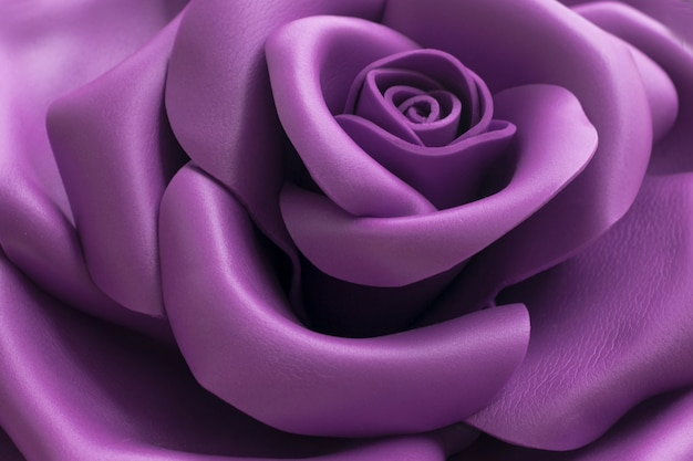 Close up image of a beautiful violet rose.