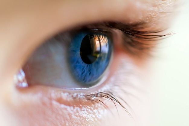 Close-up image of blue human eye with eyelashes