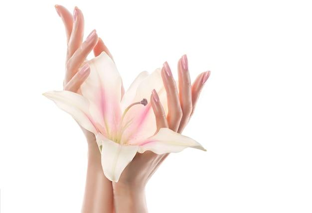 蘭の花のつぼみを持っている優雅な女性の手のクローズアップ画像。