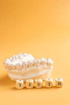 클로즈업 개별 치아 트레이 교정 치과 테마. 손에 보이지 않는 교정기