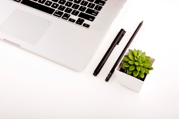 Close-up of laptop; pen; pencil and potted plant on white background