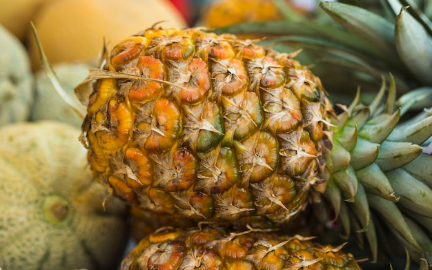 Close-up of large pineapple
