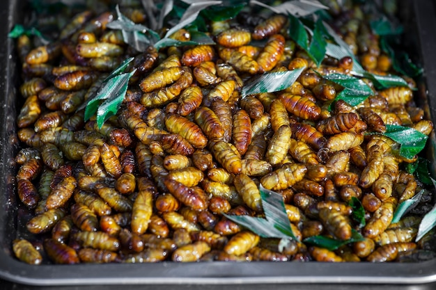 태국 시골 사람들의 길거리 음식으로 조리된 번데기의 유충을 닫습니다. 판매를 위한 식품 시장에 튀긴 유충