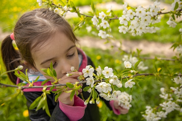 Close-up of a little girl sniffing a blossoming tree branch.