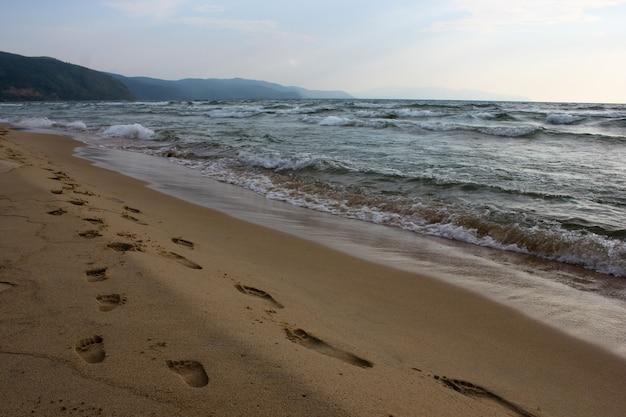 Close-up long path of family footprints on sandy ocean beach