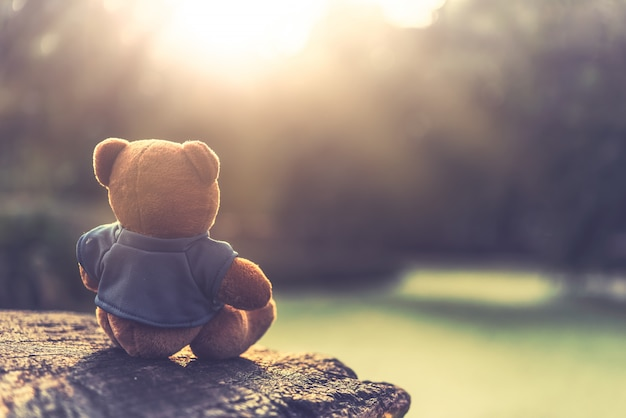 Close up lovely brown teddy bear sitting on grass field with lens flare. retro and vintage style