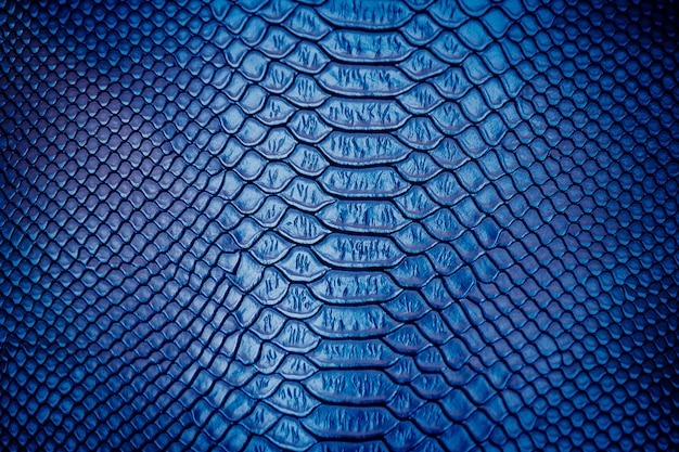 Close up of luxury snake skin texture use for background