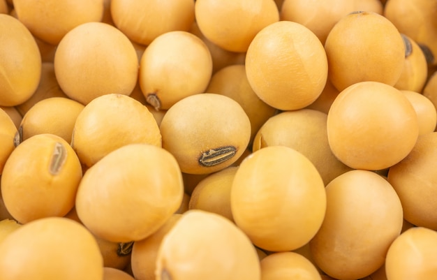 Close up,macro group of soybeans